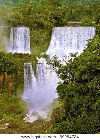 The grand Iguazu Falls on the Brazilian side. Multi-tiered cascades of water roar of lush jungle.