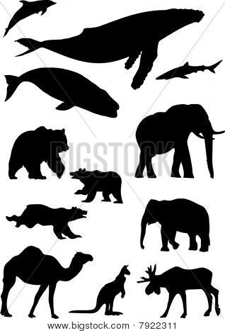 wild animals. Silhouette vector collection