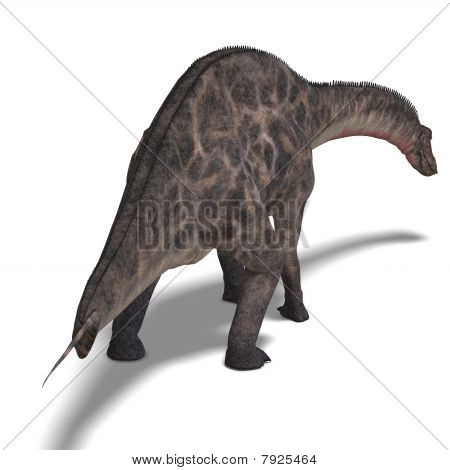 Dinosaur Dicraeosaurus. 3D rendering with clipping path and shadow over white poster