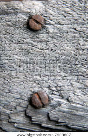 Grey old wood with  srew.