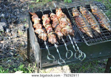 Grilled shish kebab and fish