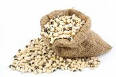 black eyed peas beans in canvas sack on white background poster