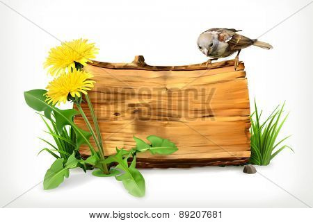 Wooden banner, dandelion and green grass, vector illustration