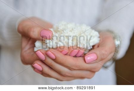 White coral in female hands