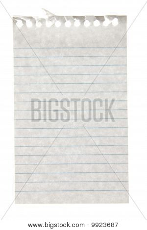 Single Sheet Of Paper, Torn From A Small Fliptop Notepad