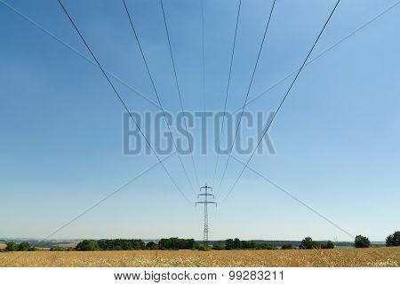 Powerlines In Summer
