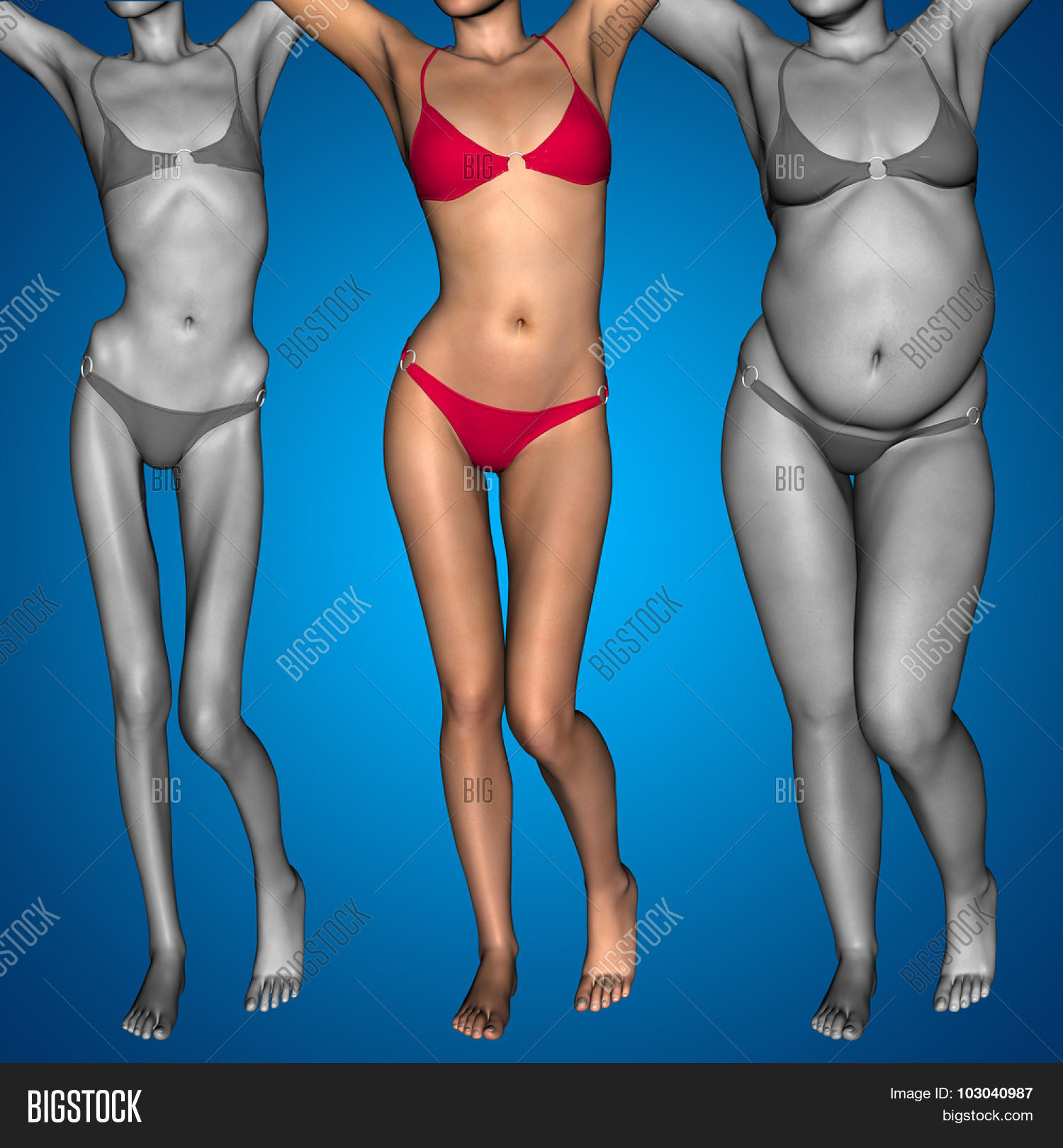 Concept Conceptual 3D Image & Photo (Free Trial)   Bigstock  Obese Vs Anorexic