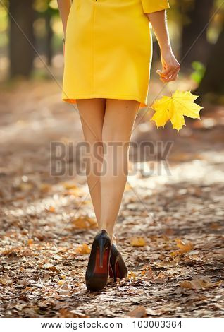 Fashion image of perfect long slim woman legs on autumn road.