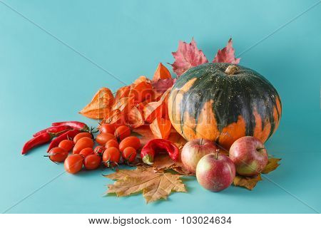 Colored Pumpkin Shadowless Background