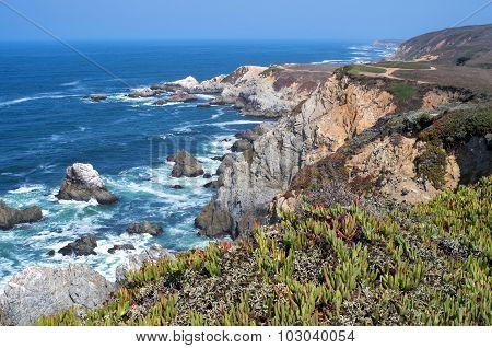 Bodega Head Rugged Coast And Trail