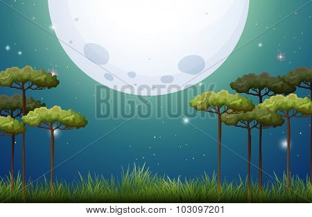 Nature scene on fullmoon night illustration