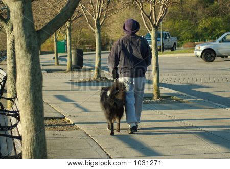 poster of woman walking black dog in the park