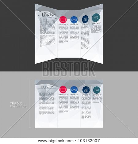 Trifold Brochure Template Design in DL Size   EPS10 Vector