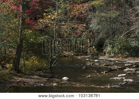 Fires Creek on an Autumn Day