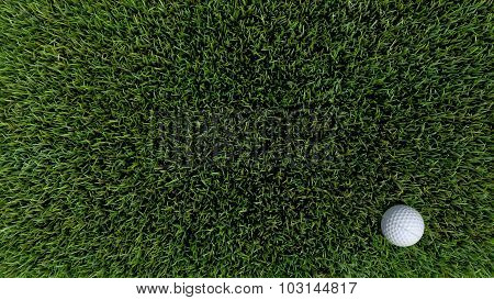 Golf Ball On Green 05
