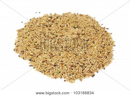 Millet birdseed in a round shape on white background