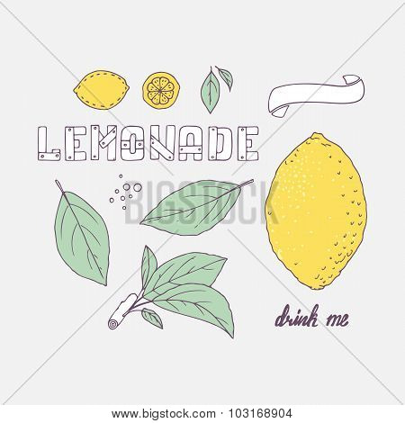 Set Of Hand Drawn Elements For Lemonade Or Soda Drink Package Design. Doodle Lemon, Leaves, Icons, L