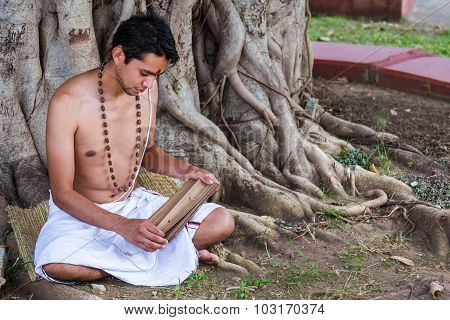 Study Under a Tree