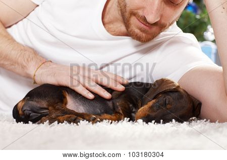 Closeup portrait of young man caressing sleeping dachshund puppy.