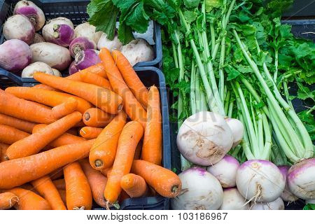 Carrots and other vegetables