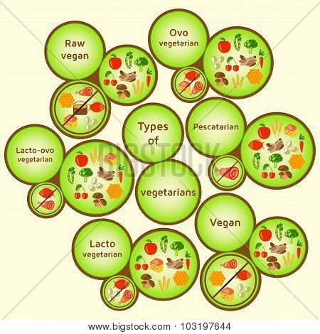 Vegetarian types infographic. Variety diets.