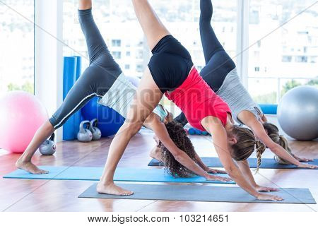 Women doing half downward dog posture in fitness studio