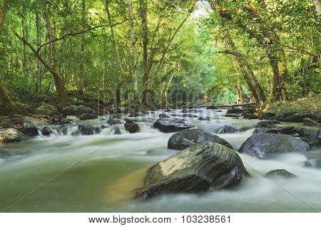 Tropical River