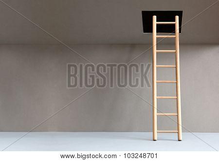 Ladder In Hatch