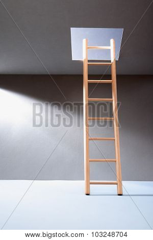 Ladder In Hatch