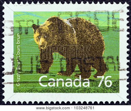 CANADA - CIRCA 1988: A stamp printed in Canada shows Grizzly bear (Ursus arctos horribilis)