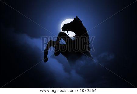 Arising Horse