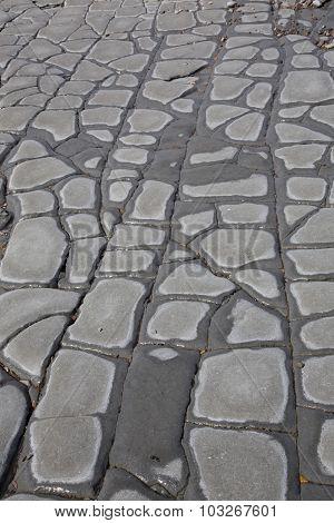 Jurrasic Stone