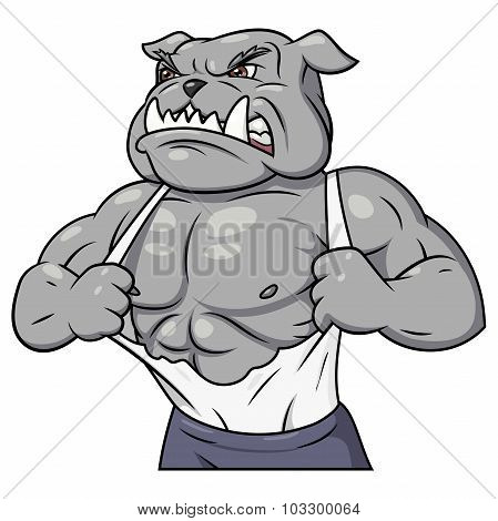 Illustration of the strong muscle aggressive bulldog tearing his shirt poster