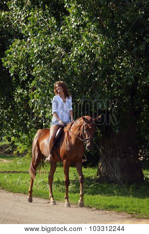 Beautiful cowgirl ride horse in summer park