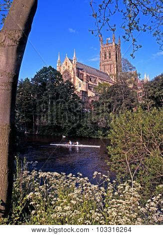 Worcester Cathedral and rowers.
