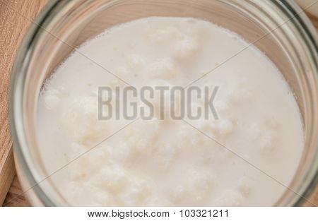 Kefir and kefir grains in glass jars with a wooden spoon