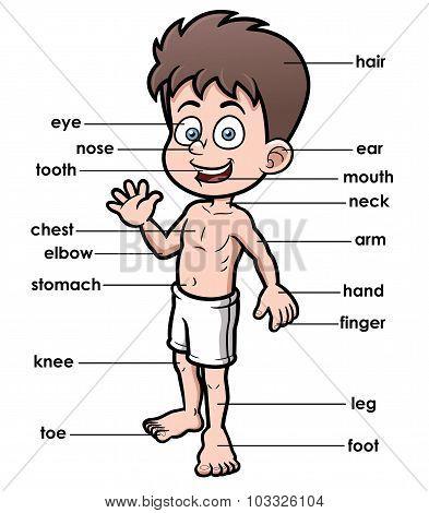 Vocabulary Part