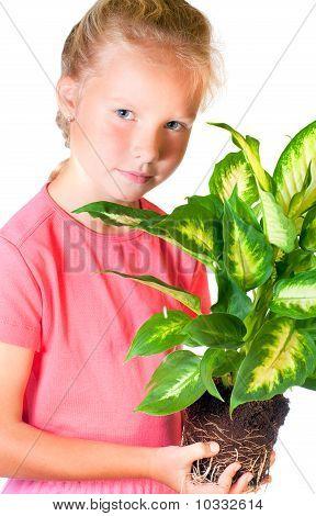 Girl With Houseplant