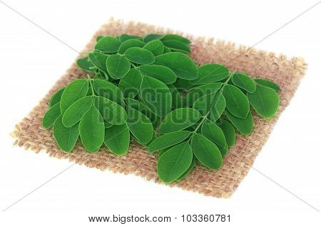 Edible Moringa Leaves On Sack Surface