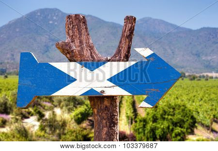 Scotland flag wooden sign with rural background