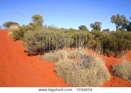 Australia Outback 9