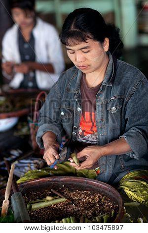 Burmese Woman Working In A Tobacco Factory, Myanmar