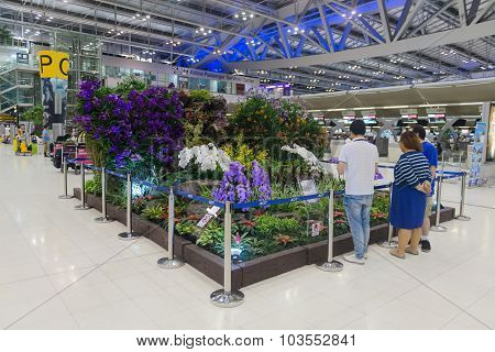 Beautiful, Indoor Garden Display In The Main Concourse Of Suvarnabhumi Airport's Passenger Terminal.