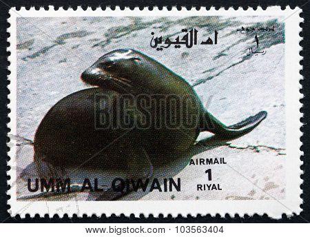 Postage Stamp Umm Al-quwain 1972 California Sea Lion