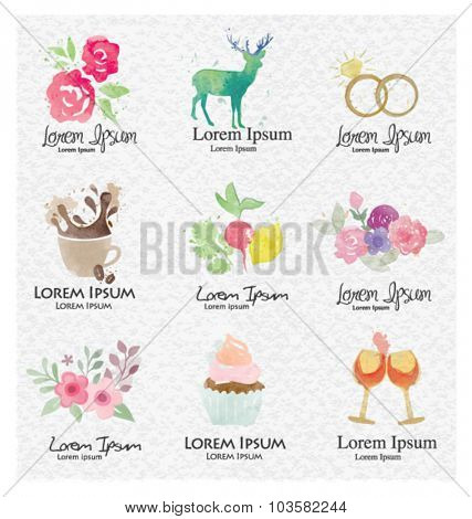 Vector graphic elements set. Colorful collection drawing watercolor. Company identity, brand design for invitation, wedding or greeting cards