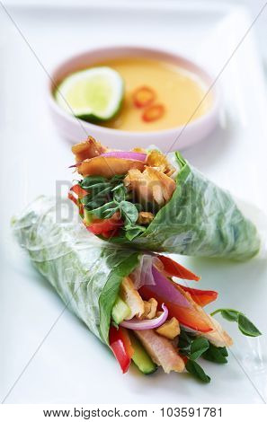 Mini asian canapes, fresh rice paper spring roll appetisers with grilled chicken and vegetables