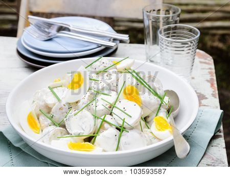 Bowl of potato salad topped with hard boiled eggs and chives at a outdoor lunch meal, alfresco dining or at a barbeque