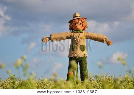 Strawman In Farm