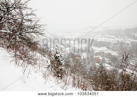 winter view of Jena