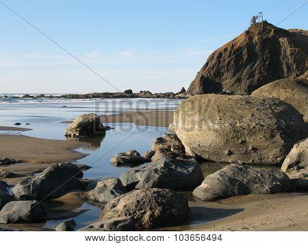 Sea Rocks Low Tide
